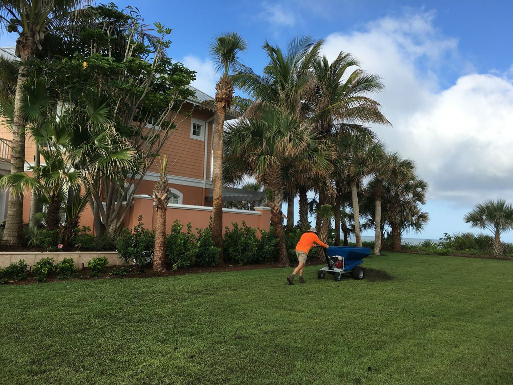 4 Ways A Landscape Maintenance Company Can Keep Your Soil Healthy