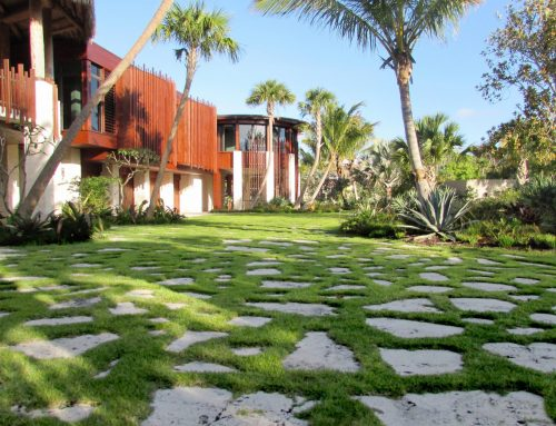 Why You Need A Landscape Designer To Create Beautiful Outdoor Spaces In Sarasota