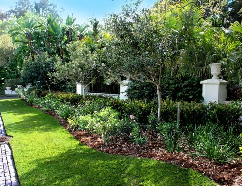 Soil Health Is The Key To Great Landscaping In Sarasota