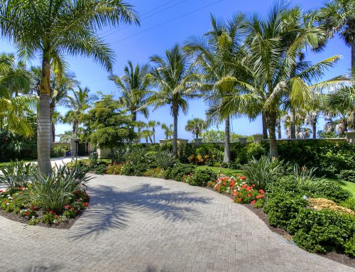 3 Landscape Design Tips For Your SW Florida Home
