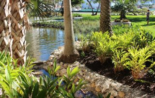 The Bay Sarasota Phase 1 - Wilhelm Brothers Landscape Management Grant Beatt Sarasota